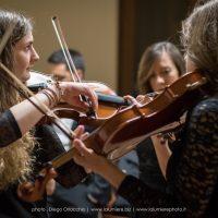 Orchestra Filarmonica di Benevento:particolare 4